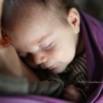 Le portage physiologique: pourquoi porter son bébé - Petits Bonheurs et Compagnie-Photographie