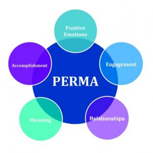 PERMA2