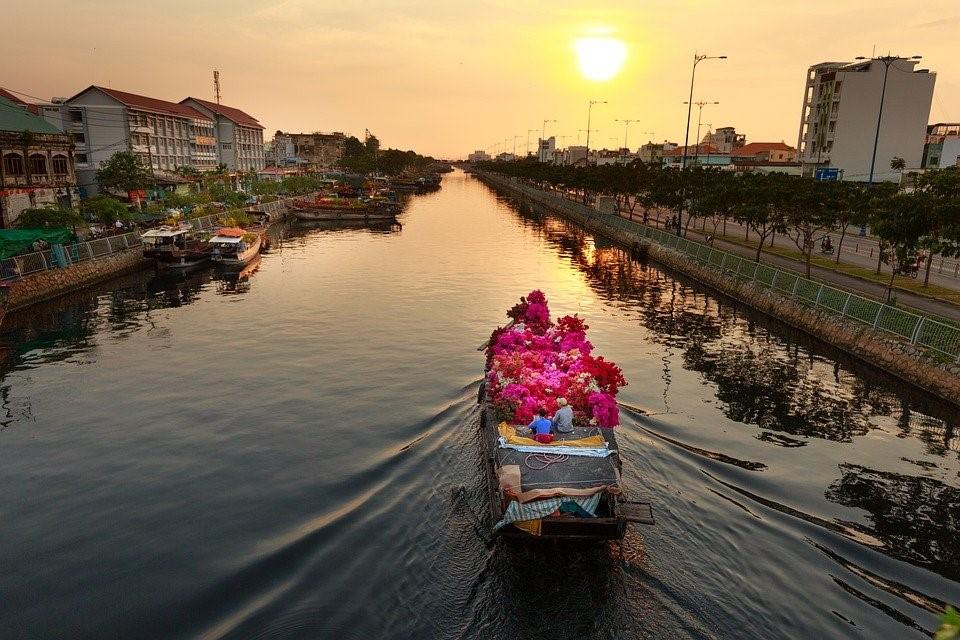 Fleur, Marché, Viêt-Nam, La Ville, Nouveau, Ho Chi Minh